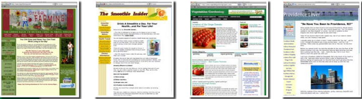 money making websites examples